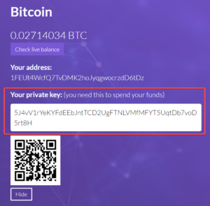 private key screenshot from website